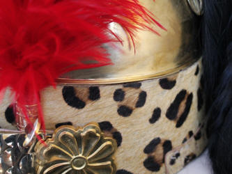 French Dragoon Helmet for sale Detail image of plume, holder turban and boss